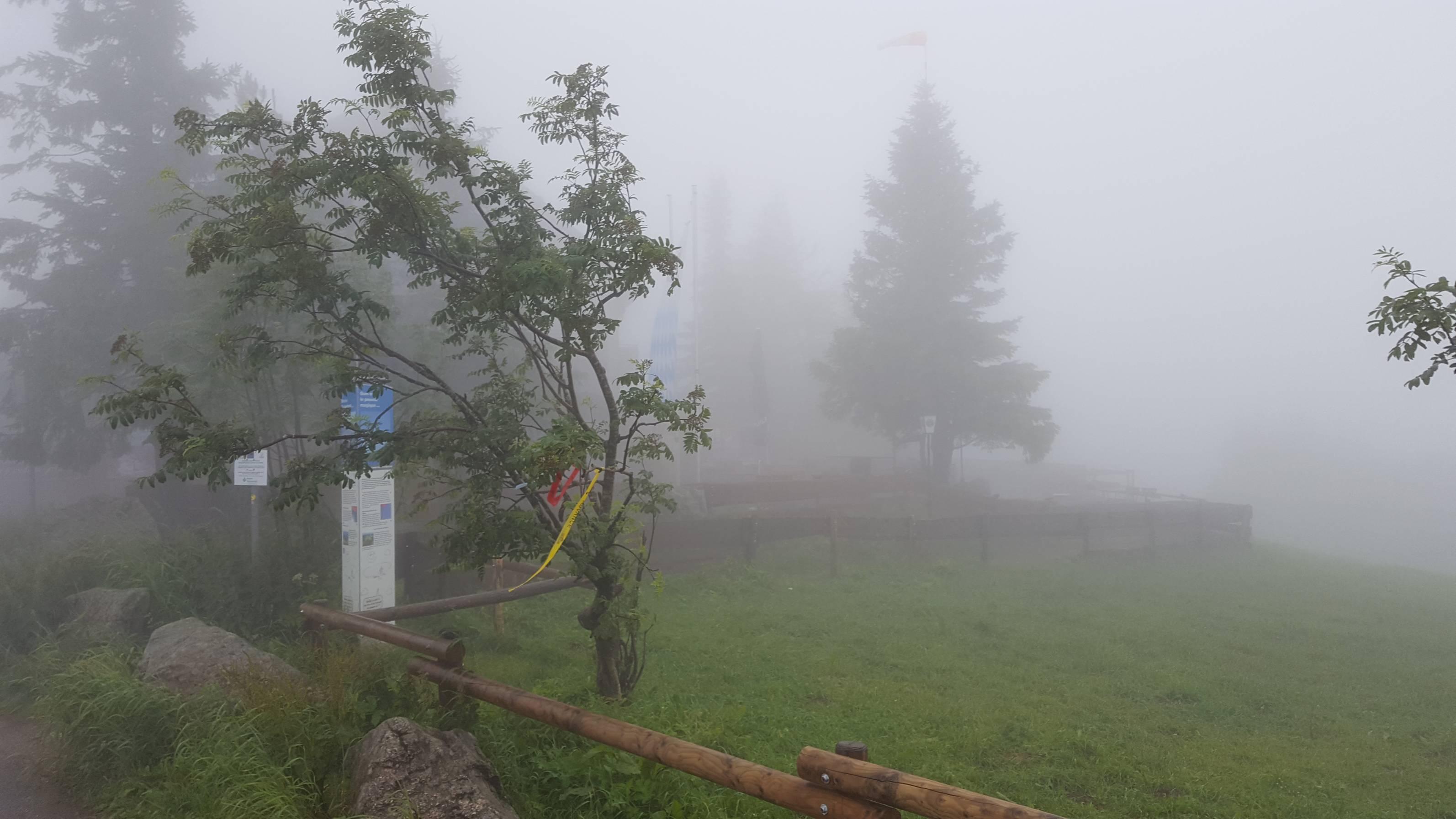 Kandelgasthof im Nebel