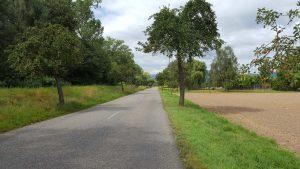 In der Rheinebene sind die französischen Straßen SEHR langweilig...