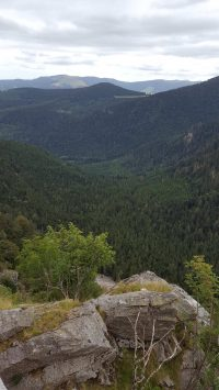 Col de la Schlucht, Blick vom Aussichtspunkt